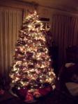 ルー先生のクリスマスツリー