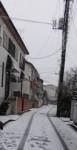 雪が降ったよ~