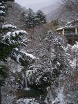 20051230-shimakoizumi
