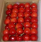 20060628-cherry